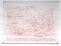 8, 027 nudos, 2011