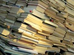 De los libros a los insectos