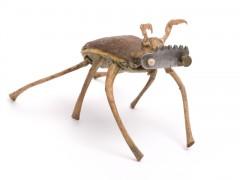 Insectario - Bestiario