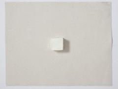 9 cm3 óleo sobre tela, 2009-2010