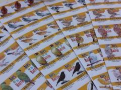 Aves de tu barrio