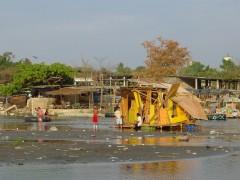 Guatemex, 2006