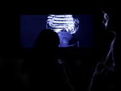Exposición Afecciones Colaterales/ Festival de Artes Electrónicas y Video TRANSITIO_MX 4.