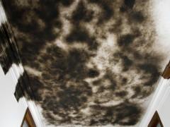"""Cloud"", Soot on ceiling."