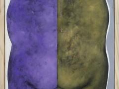 alfredo-quiroz-solo-la-mitad-artesur
