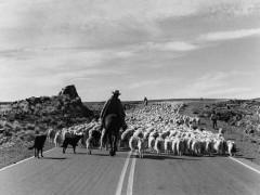 Libro fotográfico: Patagonia