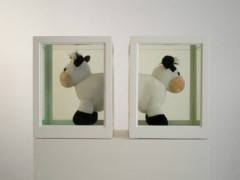 Two Cows (or About  the study of  leading roles), 2007.