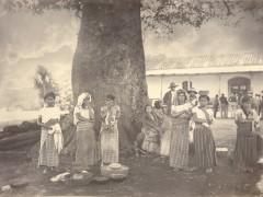 "Exhibition ""Agostino Someliani y la Guatemala del Siglo XIX"""
