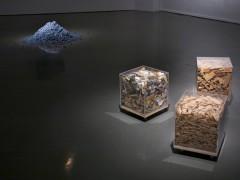 Exposición Non Compos Mentis, Sala Jesús Gallardo, León, Guanajuato, México, 2011.
