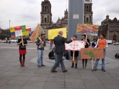 Concepción y seguimiento del programa de residencias de artistas. Casa Vecina – Espacio Cultural 2008-2009.