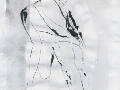 Cristina Llano