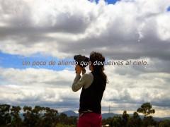 c´est la vie