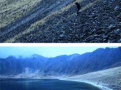 Proyecto: Ser y diluirse (2009-2011)