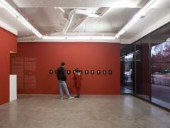 """Exhibition """"Cochinilla"""""""