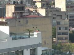Avenida Insurgentes, 2010