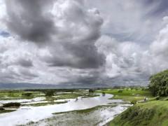 Paisaje tropical en invierno - Desborde del río Cauca