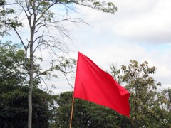 Redflag [territory], 2011