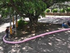 Zona Rosa, 2010