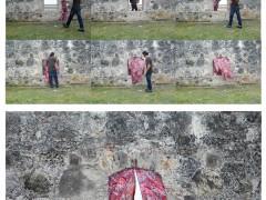 Cortinas en la muralla, 2010
