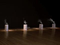 'Carnal' by 2012 Prince Claus Laureate Teresa Margolles
