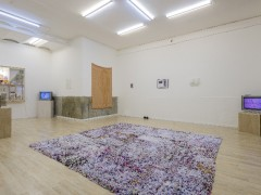 El cuerpo fragmentado: polvo debajo de la alfombra / The Fragmented Body: Dust Below the Carpet