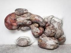 Xilonoma Chamusquius 2 - 2012