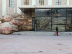Ursulinens Prolapse (external view) - 2012