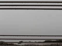 Ascenscion silencieuse / Silent Rise (detail)