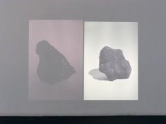 L'inconstance des pierres sauvages, 2013
