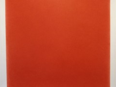 Dibujo rojo : 251,2 km de líneas aplicadas a un paisaje