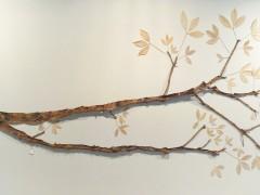 Latex Tree Project, Branch B (Proyecto Árbol Látex, Rama B)