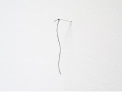 Philip Newcombe, Signal, 2012