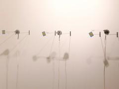 Adriana Salazar, Daring machine, kinetic installation, 2008