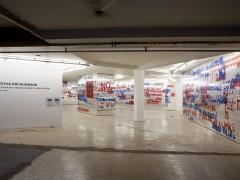 Exhibition Stefan Bruggemann  - 2013