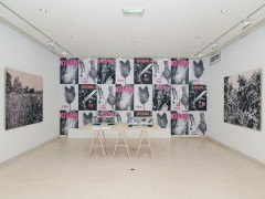 Exhibtion View