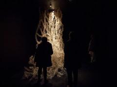 Espacio de Arte Contemporáneo, Julia Castagno, Modelo para la Supervivencia, 2014.