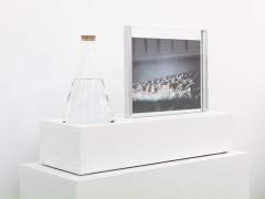 Disparitions, Exhibition view, HONORÉ, Paris, 2015 -  © Grégoire Éloy