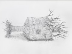 Full Body Shadow 2015 Pencil on paper 29 1/2 x 41 3/4 in. Unique piece