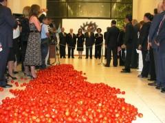 Alfombra roja o 300 kilos de tomate