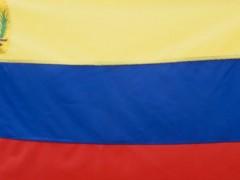 La vidéo montre un drapeau du Venezuela, situé au premier plan. Celui-ci est progressivement percé de tirs à l'endroit des étoiles. Je propose ici une réflexion sur les agressions, les mutations et la re-signification du discours médiatique, social et politique dont a fait l'objet le drapeau de la nation vénézuélienne, où la violence est devenue une identité.