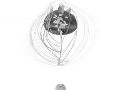The hemisphere of the shadow,2010