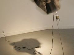 Exhibition: Disappearing Excercises