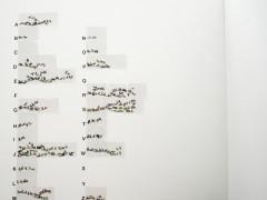 Ziervögel von A bis Z, 2011