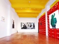 """Exposición: """"El Placer de lo Inesperado de Fabrizio Arrieta"""""""