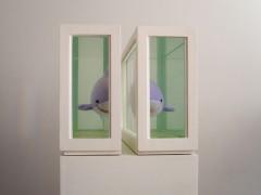 Dos tiburones (o Acerca del Estudio de los Protagonistas…), 2008.