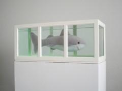 Tiburón (o Acerca del Estudio de los Protagonistas…), 2006.