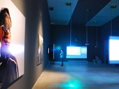 Exhibitions 2011