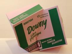 Downy, 2007
