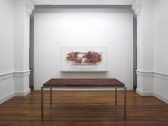 Con la sangre en el ojo - Cristina Piffer - Serie Las marcas del dinero 200 pesos, 2010