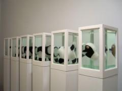 Seis vaquitas (o Acerca del Estudio de los Protagonistas...), 2008.
